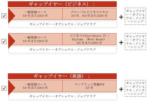 ギャップイヤー・プログラムのオプション01